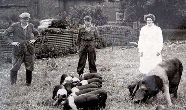1940s-farmhouse-3